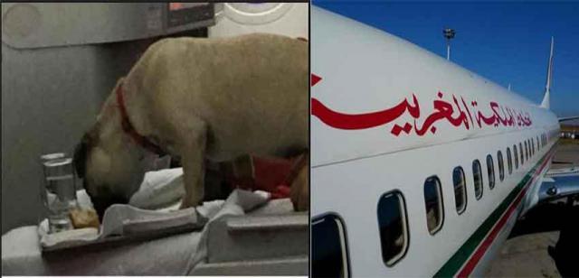 Royal Air Maroc chine@Yawatani
