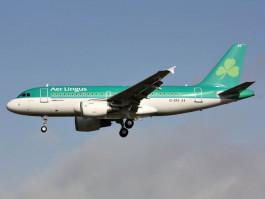 air-journal_Aer_Lingus_A319@MercerMJ