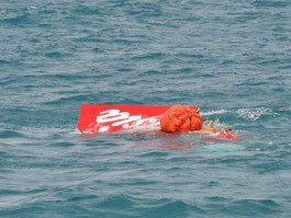 air-journal_AirAsia crash QZ8501 tail
