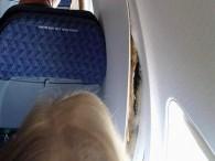 air-journal_American Airlines trou@James Wilson