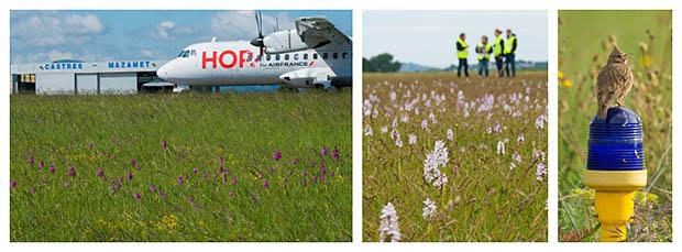 air-journal_HOP Biodiversite