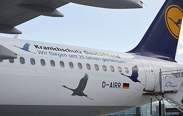 air-journal_lufthansa-a321-crane