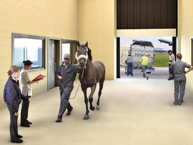 air-journal_New York JFK Ark horses