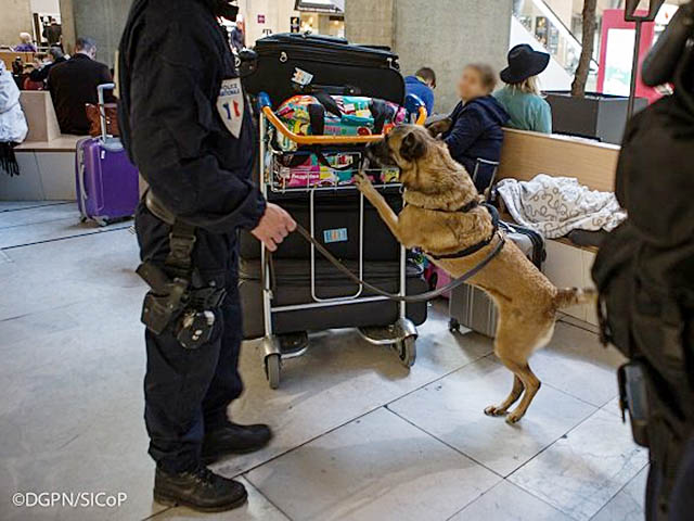 air-journal_Paris CDG aeroport securite chien@DGPN