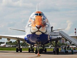 air-journal_Transaero tigre1