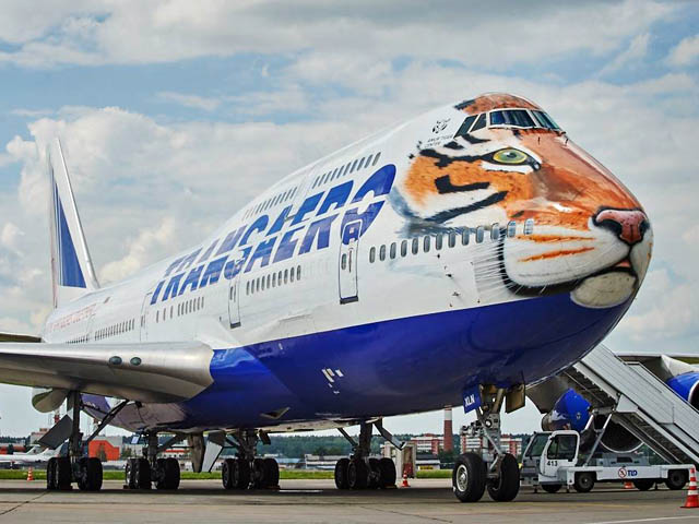 air-journal_Transaero tigre2
